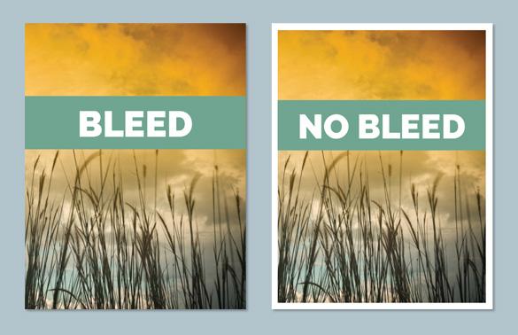 Bleed, No Bleed